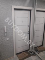 Двери входные металлические и межкомнатные в Минске